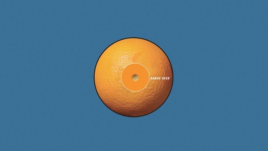 orangeSeed_008